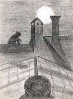 El volumen de una sombra