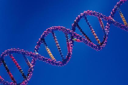Genética 2