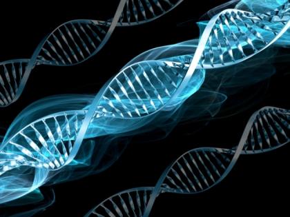 Genética 3